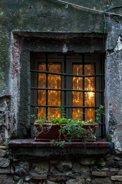 Evening window.