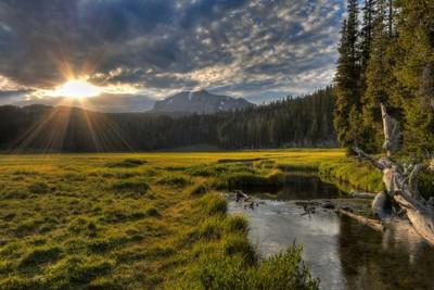 Lassen Peak Through The Meadow