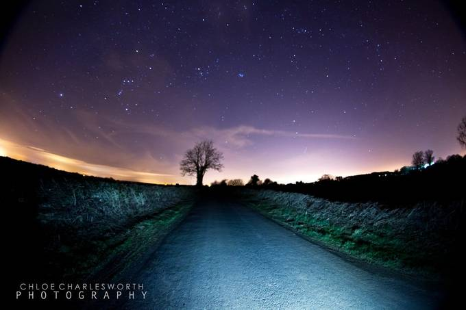Night  by ChloeCPhotography - Silhouettes Of Trees Photo Contest