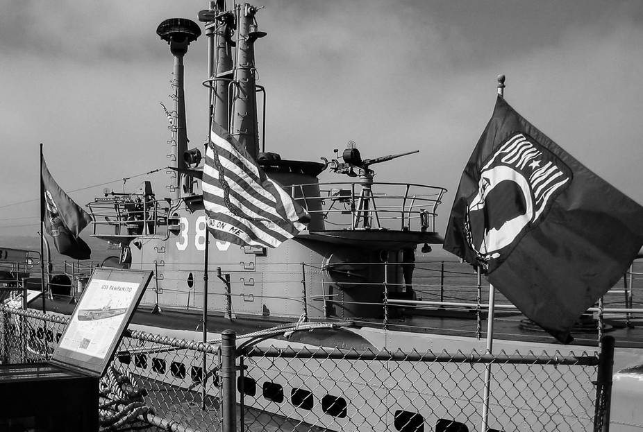 flags acroos sub bw