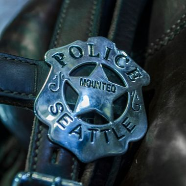 I volunteer for the Seattle Mounted Patrol, photographing them and administering their Facebook site: Friends of the Seattle Mounted Patrol. This is the badge the horses wear.