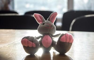 Smiling Bunny