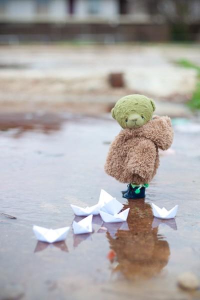 bear story - where the dreams go