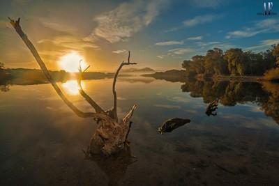 Dawn at Sabaudia