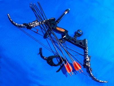 Compound bow FIREBRAND
