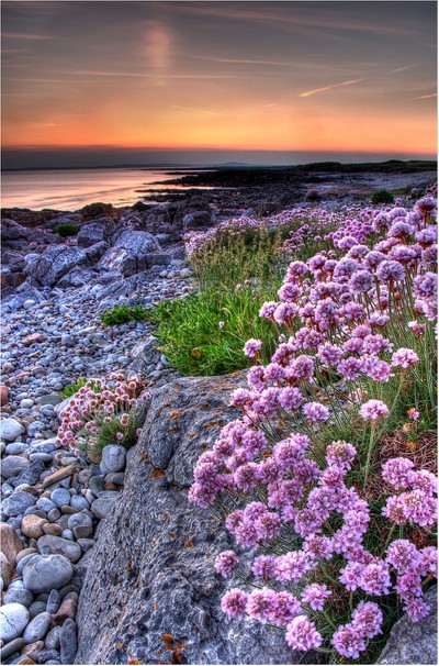 Rest Bay, Porthcawl, South Wales