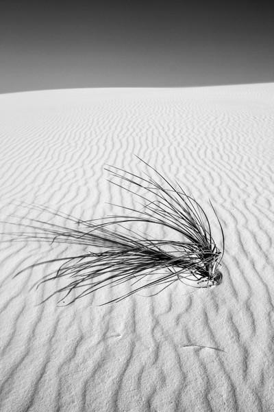 White Sands NM-4153