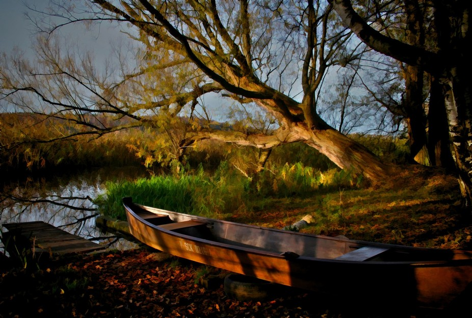 On a walking trail in Poland I found this old row boat tied up to a tree and the shades and how everything seem to fall into place for this shot.