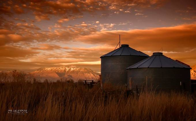 Silos by valentinecyn - Farming Photo Contest
