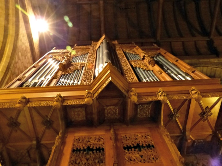 from underneath the organ pipes