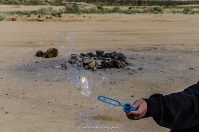 (day 78) March 19th Campsite bubbles