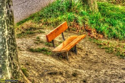 Solitude - Loneliness