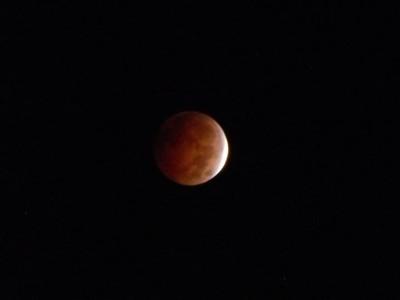 Wisconsin Rapids Lunar Eclipse 2014