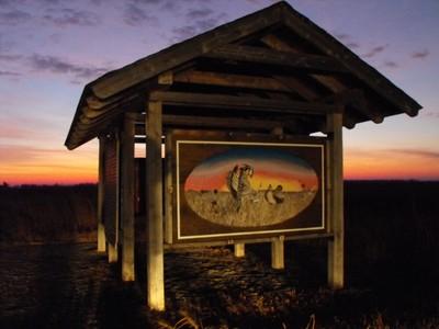 prairie chicken sunrise