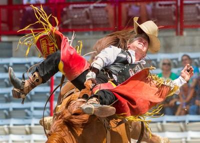 Bronc Rider at Cheyenne Frontier Days