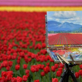 An artists painting of the tulip fields and mountains in Skagit Valley, WA