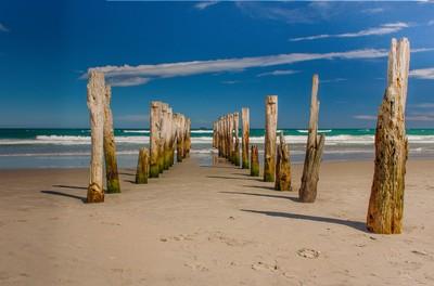 Old wharf piles, St Clair Beach, Dunedin NZ