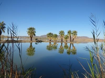 National Wildlife Refuge near Yuma Arizona