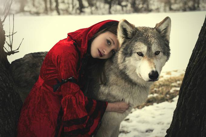 Red and Wolf by lauradark - Children and Animals Photo Contest