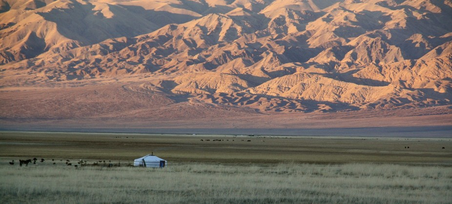 Typical Mongolian landscape during my cycling journey through Asia