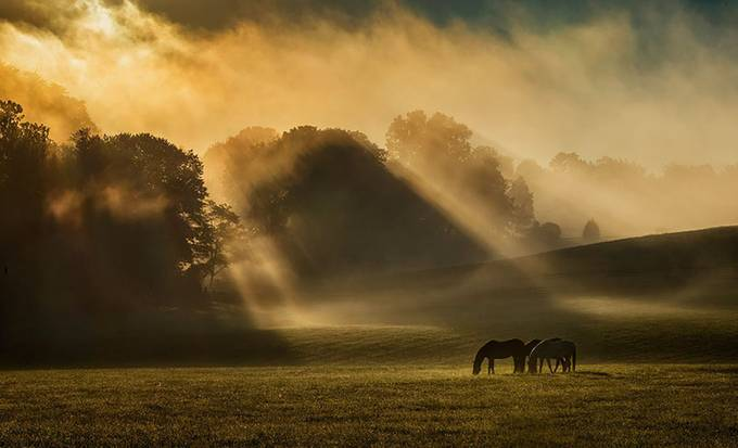 foggy farm  by beamieyoung - Layered Compositions Photo Contest