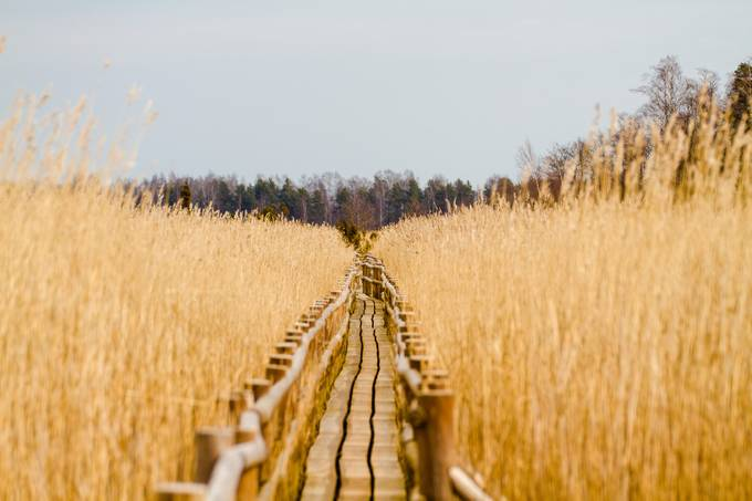 Route to nowhere. by BiceksPhoto - Rails and Fences Photo Contest
