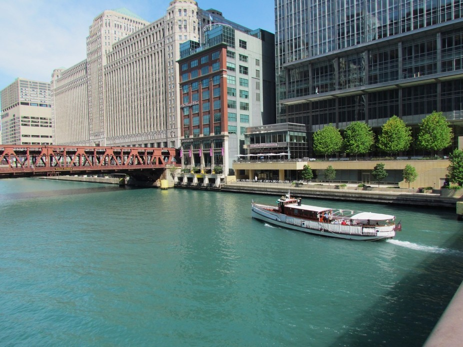 The Beautiful Green River of Chicago