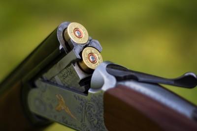Gun Cartridges