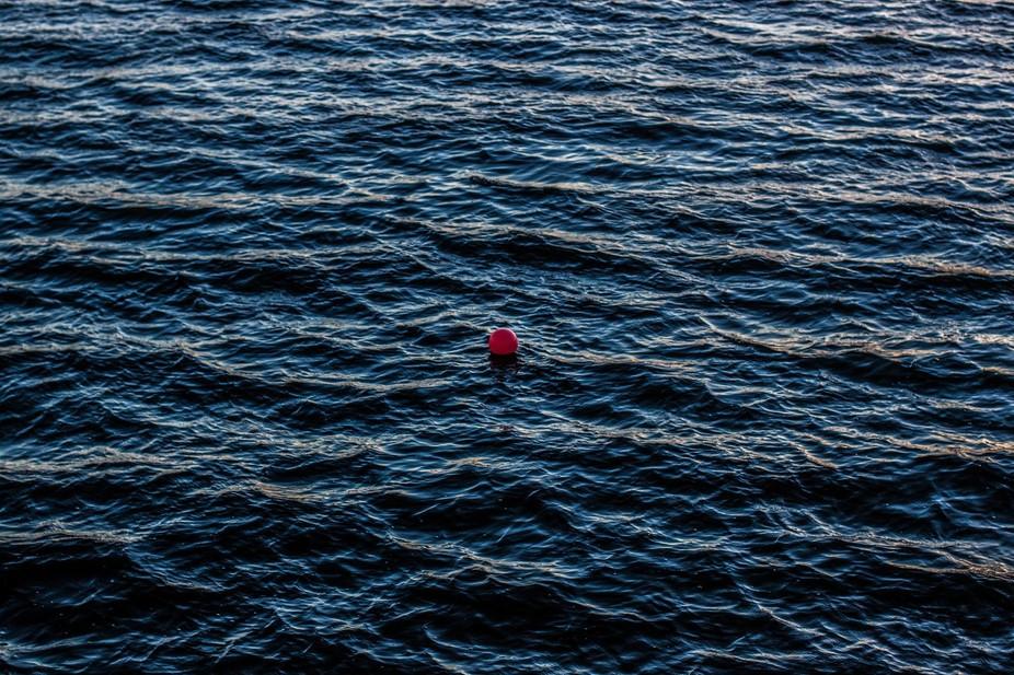 clowns can\'t swim