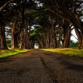 This is a short road just off Sir Francis Drake Blvd in Point Reyes National Seashore and at the end of this road is a historic RCA building buil...