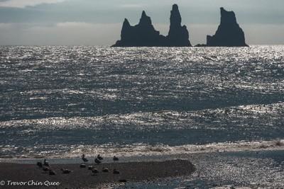 Vik-Reynisdrangar Rock Formation, South Iceland