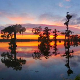 Sunset over Cypress Island Preserve, Louisiana