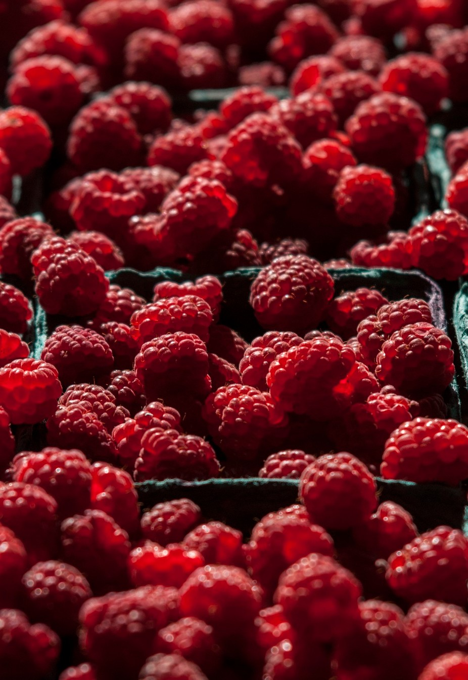 Raspberries by janetcapps - Delicious Photo Contest