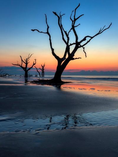 Bull Island Sunrise