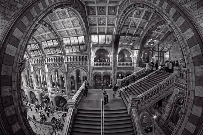 The-national-museum-of-natural-history by bazzaboy09 - Classical Architecture Photo Contest