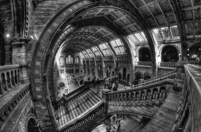 The-national-museum-of-natural-history by bazzaboy09 - Depth In Black And White Photo Contest