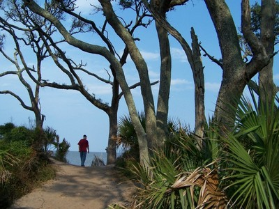 Approaching Driftwood Beach