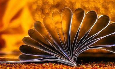 Bokeh Book