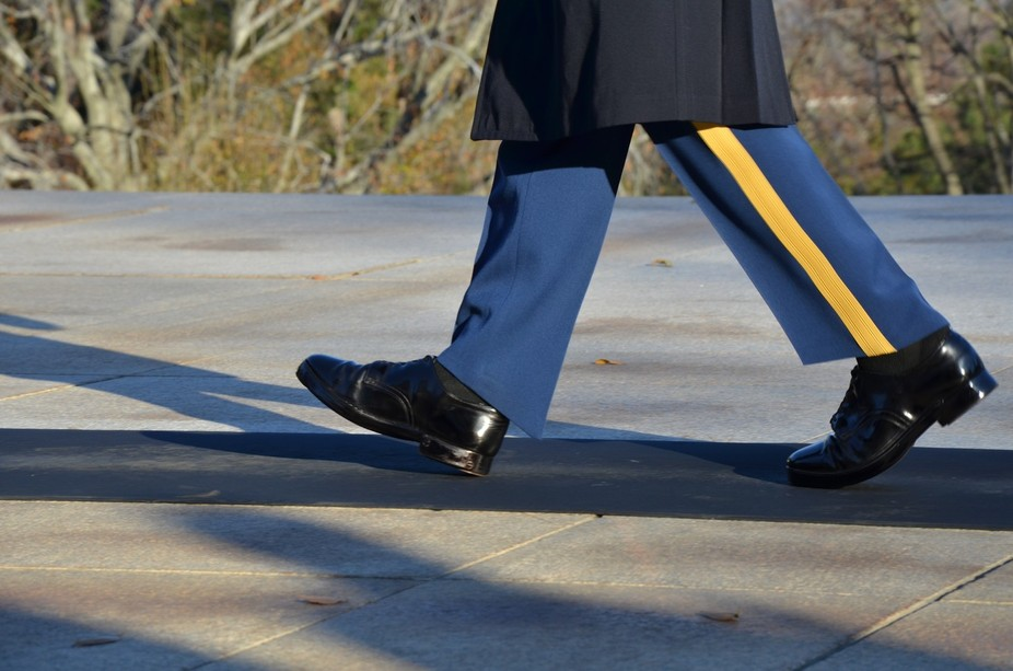 Guard at the Tomb of the Unknown Soldier