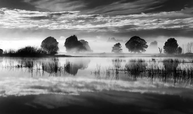 Morning on the Lake by PhillipMinnis - Black And White Compositions Photo Contest