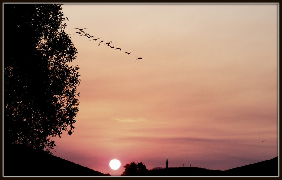"Sunset just in front of my house...Caloundra-QLD Australia...""Sunshine Coast"".."