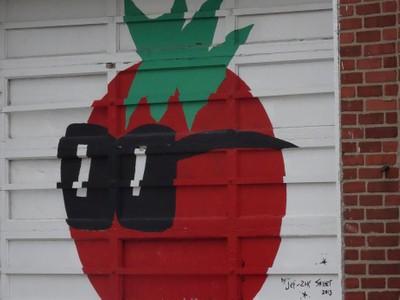 Tomato on a Garage Door- Indy