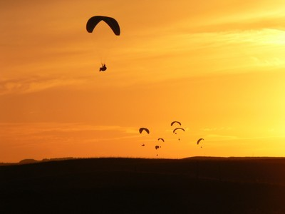 Skydivers in the sunset
