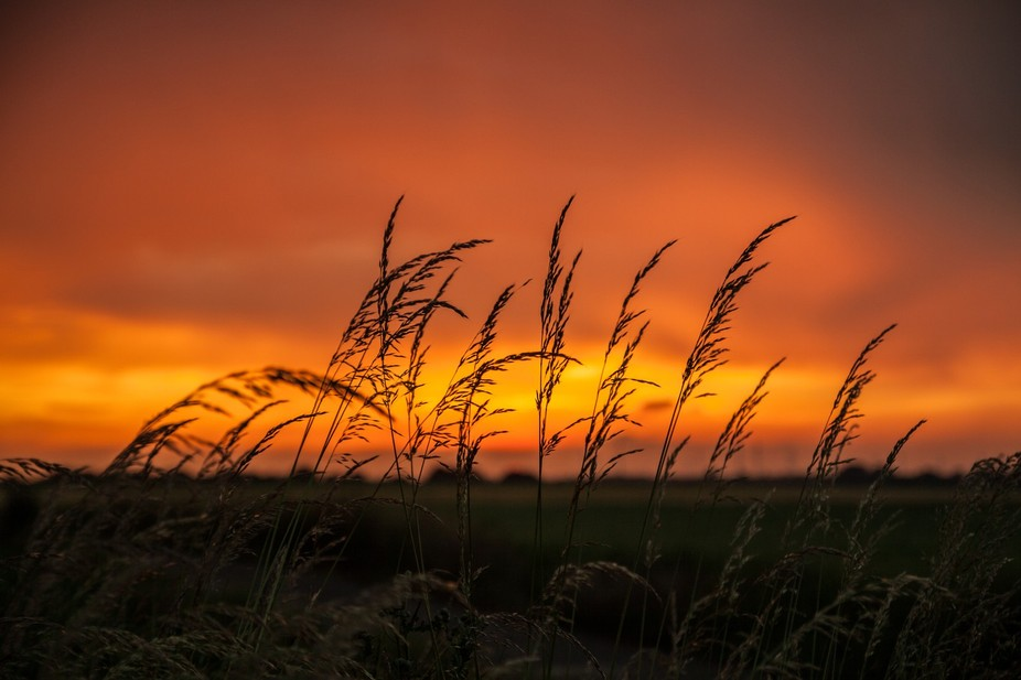 Was out taking some photos of a storm that was moving thru, when I just turned around and saw thi...