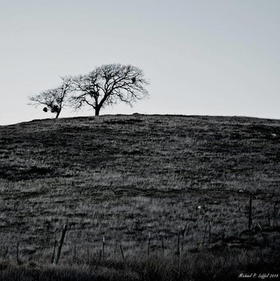 lonesome hill