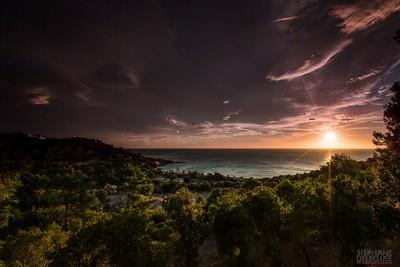 Tarco Corsica