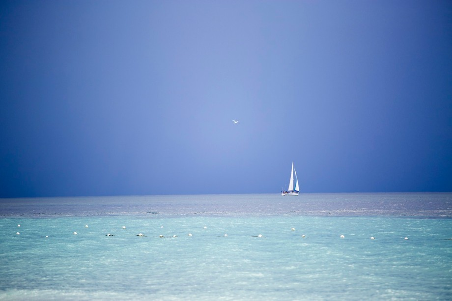 Storms all around - lonely sail boat and seagull