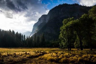 Yosemite Beauty