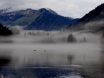 Lac Montriond in the mist