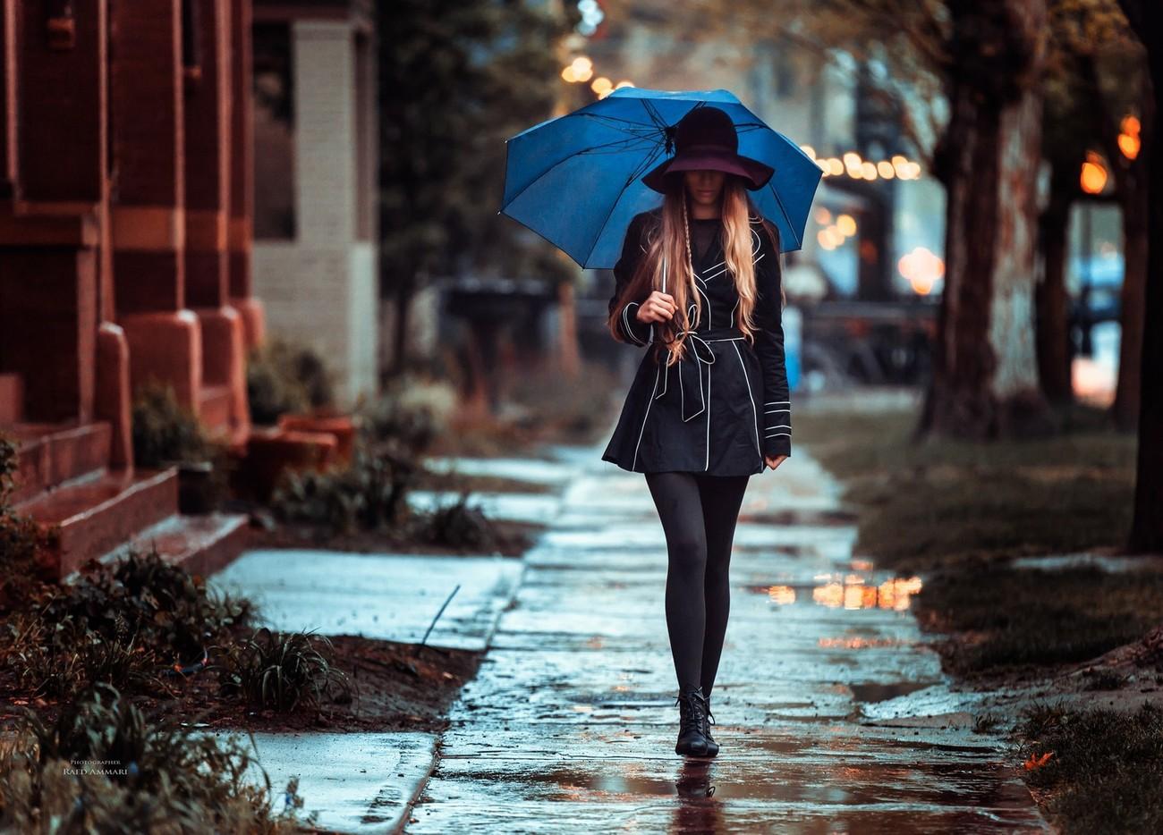 Where To Walk Dog On Rainy Day